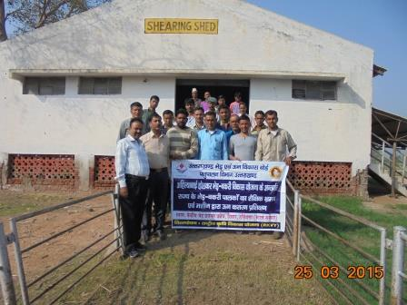 Training & Exposure visit of Farmers at CSBF, Hisar, Hariyana