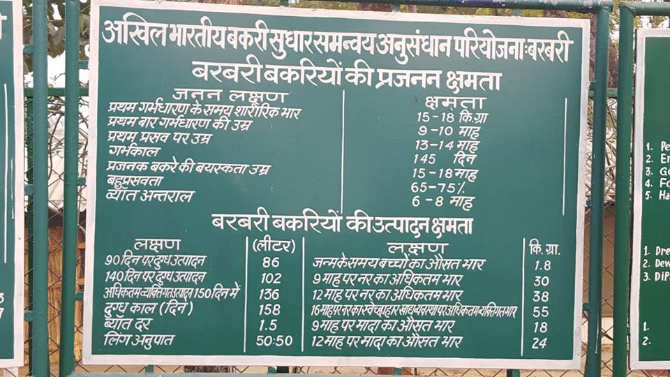 CIRG, Makhdoom, Mathura